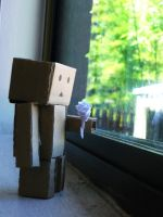 Danbo Waiting by random-lil-azn