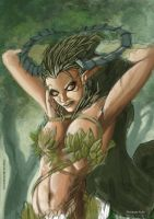 Dryad WIP 3 by shiprock
