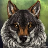 Wolf head speedpaint by KFCemployee