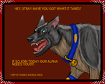 Stray City Dunkle Shicksal Pack Recruitment Poster by lighteningfox