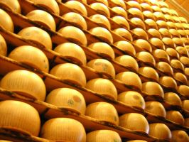 Parmigiano 'resting' by LauraForti