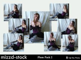 Plum pack 2 by mizzd-stock