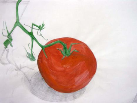 Tomato Study by Houseowl