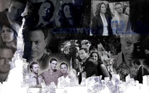 + CSI NY by WATelse