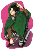 SNK  pocket sized soldier by lilacalosa