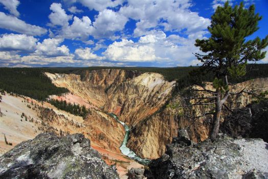 The Grand Canyon of Yellowstone by boradaphotography