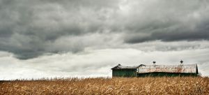 Before The Storm by waudrey