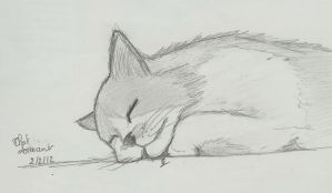 cat that sleep by atsumimag