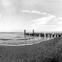 At the beach by TLO-Photography