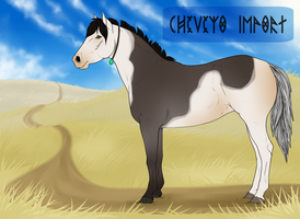 Cheveyo Import 17 by Catzei