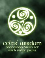 Celts' Wisdom by patslash