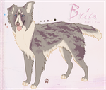 bria reference. by mooberri