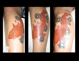 koi fish by 44anarchy44