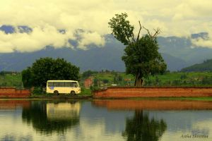 trees, bus, clouds reflection. by asthastha