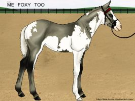 MD Me Foxy Too by wideturn