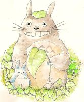 My neighbor Totoro by Dunicakes