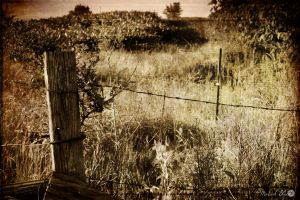 Time Warp- Barbed Wire by MariahBlack09