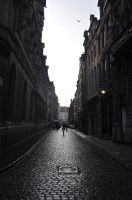 Belgium, Brussel beautiful street view by MachPL