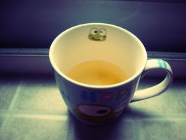 Pomelo tea in a frog cup by Laura-in-china