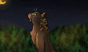 Ratha and the Lonely Stars by CopperleafThecat