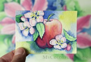Red Apple - ACEO original watercolor by Dusty-Feather