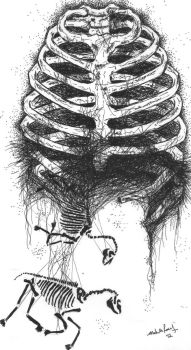 Ribcage and horse bones by TophatsTailcoats