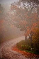 Foggy Fall by Sarah--Lynne