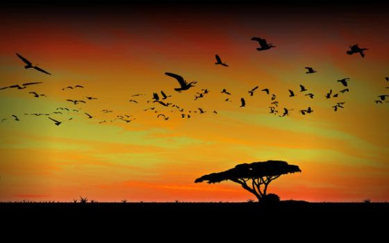 Sunset in Africa 2 by JohKern