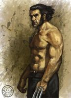wolverine_color by verdugocenobita