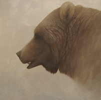 Grizzly - Head Study by ShaleseSands