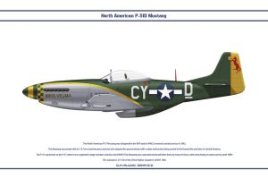 Mustang USAAF 343rd FS 1 by WS-Clave