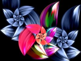 Legend Of The Poinsettia by FracFx