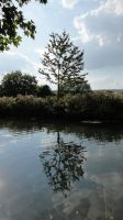 The Itchen, No.12 by The-Lionface