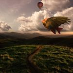 Freedom by A7md3mad