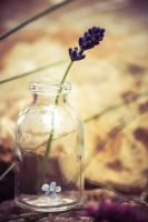 Forget-me-not bottle by NRichey
