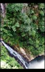 coomera falls by willow-B