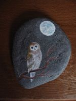 Owl on a stone by BenjiiBen