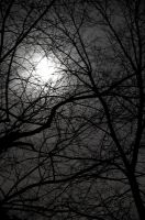 Moon through clouds 1 by AkimaDoll