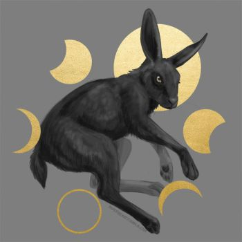 Moon Hare by Dygee
