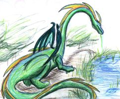 water dragon by sugar-cat-candy