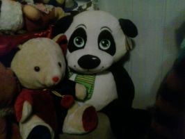 My Nird Giant Panda Plush 73 by PoKeMoNosterfanZG