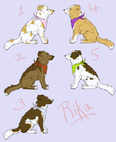 Puppy Adoptables 2 -CLOSED by Rikkanna