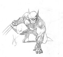 wolverine doodle by TheAdrianNelson