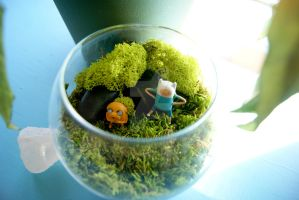 Finn and Jake Terrarium by MaForet