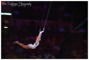 A Trapeze and A Red Top Hat by TheDarkRoom-Photo