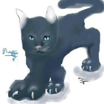the shinig star of thunderclan by leopard1220