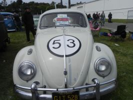 This is Herbie at Bugstock 14 by omega-steam