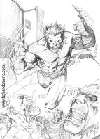 The Claws of Wolverine by fernandomerlo