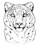 Snow leopard sketch by TheMysticWolf