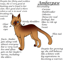 Amber-paw reference by Fwazie